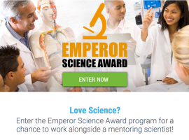 Want To Work With A Top Scientist &  Help Find A Cure For Cancer?